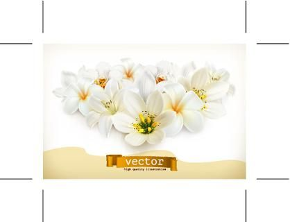 Bouquet of white flowers, vector illustration